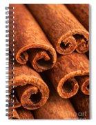 Cinnamon - Cinnamomum Spiral Notebook