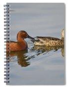 Cinnamon Teal Pair Spiral Notebook