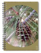 Circle Of Cones  Spiral Notebook