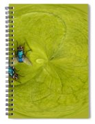 Circle Of Flies Spiral Notebook