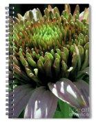 Circle Of Friends Spiral Notebook