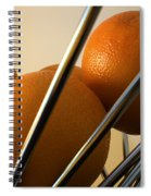 Circles And Lines Spiral Notebook