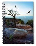 Circling Vultures Spiral Notebook