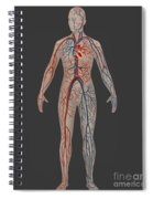 Circulatory System In Female Anatomy Spiral Notebook