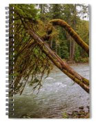 Cispus River At Iron Creek - Washington State Spiral Notebook