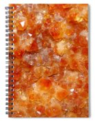 Citrine Spiral Notebook