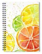 Citrus Fruit Watercolor Spiral Notebook