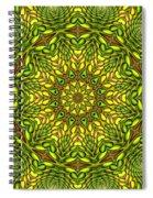 Citrus K12-33 Spiral Notebook