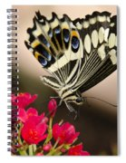 Citrus Swallowtail  Spiral Notebook