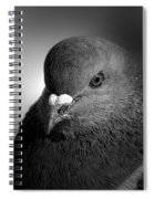 City Bird Gang Leader Spiral Notebook