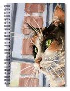 City Cat Spiral Notebook