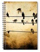 City Dwellers Spiral Notebook