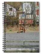 City Horse Spiral Notebook