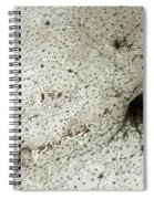 City Of Harbin Mandchouria China Spiral Notebook