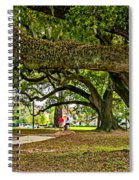 City Park Stroll Spiral Notebook