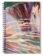 Clarisse Spiral Notebook