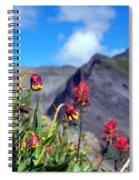 Clarity  Spiral Notebook