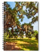 Classic Southern Beauty 2 Spiral Notebook