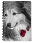 Classy Red Spiral Notebook