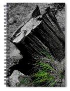 Clean Cut Sc Spiral Notebook