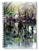 Clear Florida Springs Spiral Notebook
