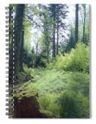 Clearing In Spring Spiral Notebook