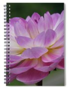 Clearly Gorgeous Spiral Notebook