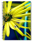 Clearly Seen Spiral Notebook