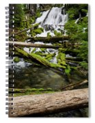 Clearwater Falls Spiral Notebook