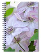 Clematis At Jack's Spiral Notebook