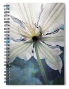 Clematis In Morning Sun Spiral Notebook