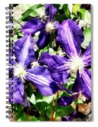 Clematis On A Stone Wall Spiral Notebook
