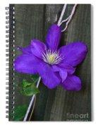Clematis On A String Spiral Notebook