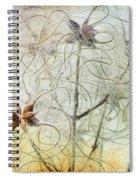 Clematis Virginiana Seed Head Textures Spiral Notebook