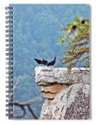 Cliff Hanging Spiral Notebook