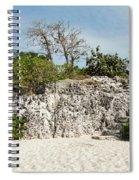 Cliff Stairs 1 Spiral Notebook