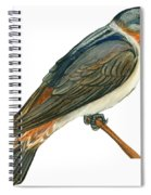 Cliff Swallow  Spiral Notebook
