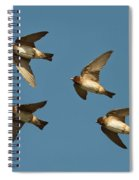 Cliff Swallows Flying Spiral Notebook