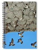 Cliff Swallows Returning To Nests Spiral Notebook