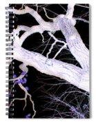 Climb In Darkness Spiral Notebook
