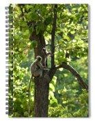 Climbing Lessons Spiral Notebook