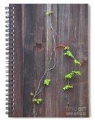 Climbing The Wall Spiral Notebook