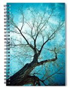 Climbing Up To The Heavens Spiral Notebook