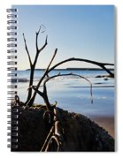 Clinging To The Rocks Spiral Notebook