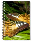 Clipper Butterflies Spiral Notebook