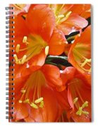 Music Please Clivia Spiral Notebook
