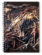 Cloaked In The Wind Spiral Notebook