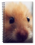 Close Friend Spiral Notebook