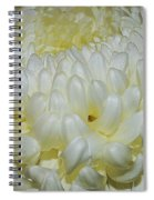 Close To The Fall Spiral Notebook