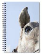 Close-up Spiral Notebook